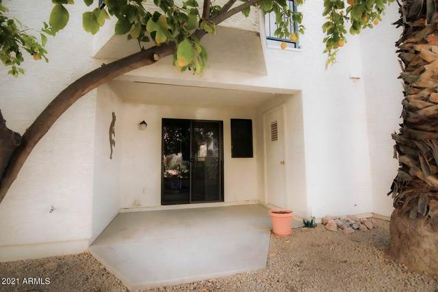 16739 E El Lago Boulevard #103, Fountain Hills, AZ 85268 (MLS #6192770) :: Yost Realty Group at RE/MAX Casa Grande