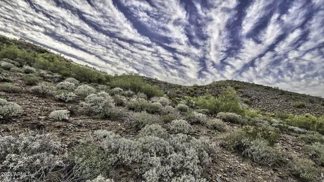 2703 E Friess Drive, Phoenix, AZ 85032 (MLS #6192783) :: The Riddle Group