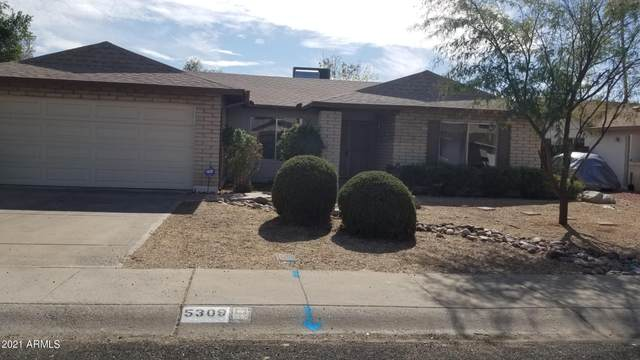 5309 W Yucca Street, Glendale, AZ 85304 (MLS #6192790) :: Yost Realty Group at RE/MAX Casa Grande