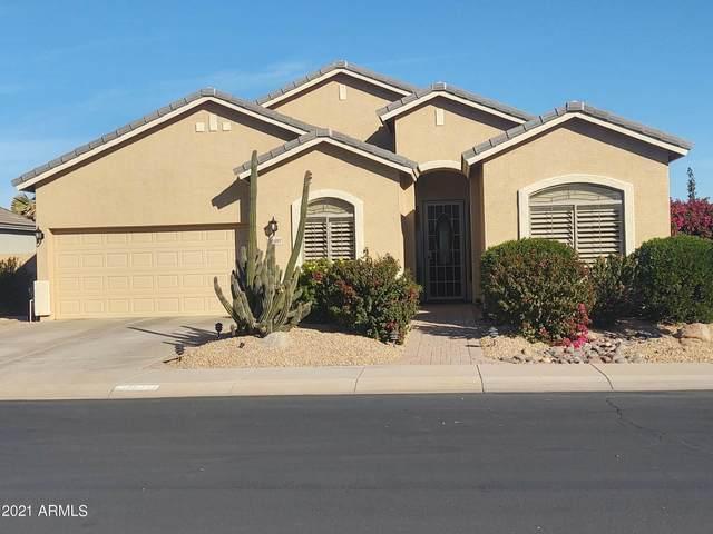 22487 N Mulligan Drive, Maricopa, AZ 85138 (MLS #6192841) :: Yost Realty Group at RE/MAX Casa Grande