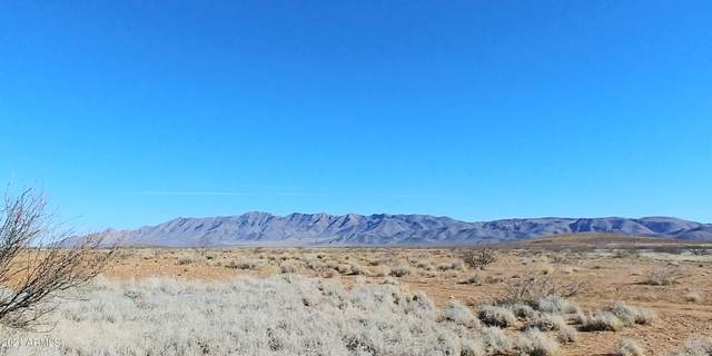 40ac W Ortiz Road, McNeal, AZ 85617 (MLS #6192997) :: Yost Realty Group at RE/MAX Casa Grande