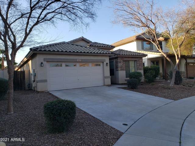 4451 E Moreno Court, Gilbert, AZ 85297 (MLS #6193033) :: The Ethridge Team
