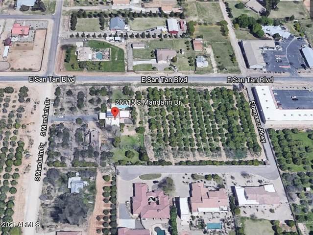 26015 S Mandarin Drive, Queen Creek, AZ 85142 (MLS #6193039) :: My Home Group