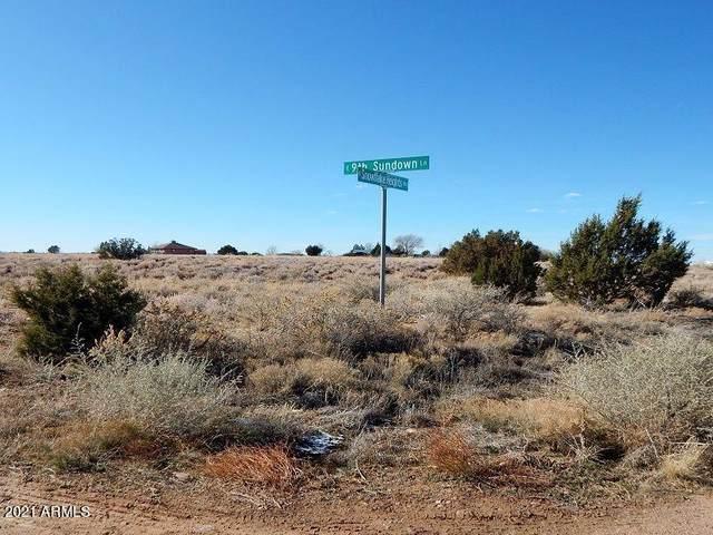 - Snowflake Heights Blvd Boulevard, Snowflake, AZ 85937 (MLS #6193058) :: The Laughton Team