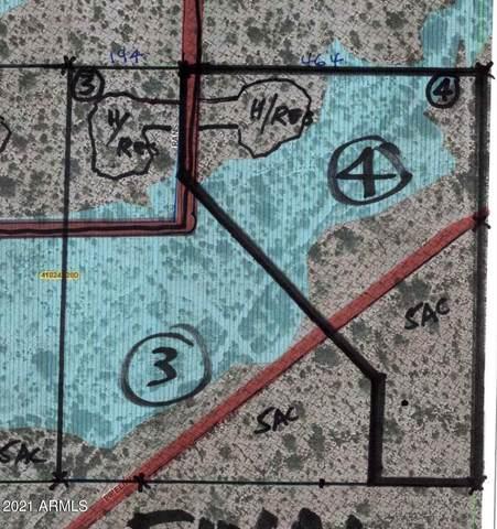 38598 S Rans Lane, Marana, AZ 85658 (MLS #6193111) :: Service First Realty