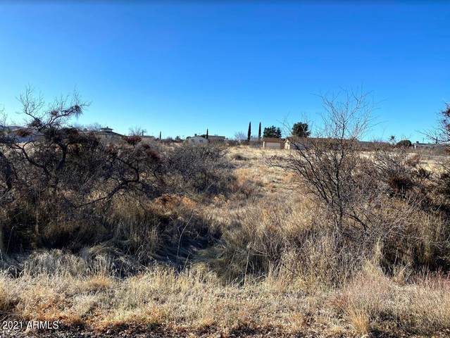 20291 E Prickly Pear Drive, Mayer, AZ 86333 (MLS #6193466) :: Kepple Real Estate Group