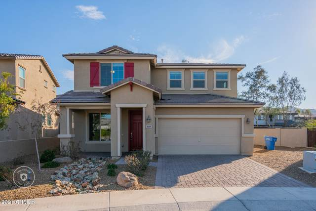 3629 E Branham Lane, Phoenix, AZ 85042 (MLS #6193491) :: Yost Realty Group at RE/MAX Casa Grande