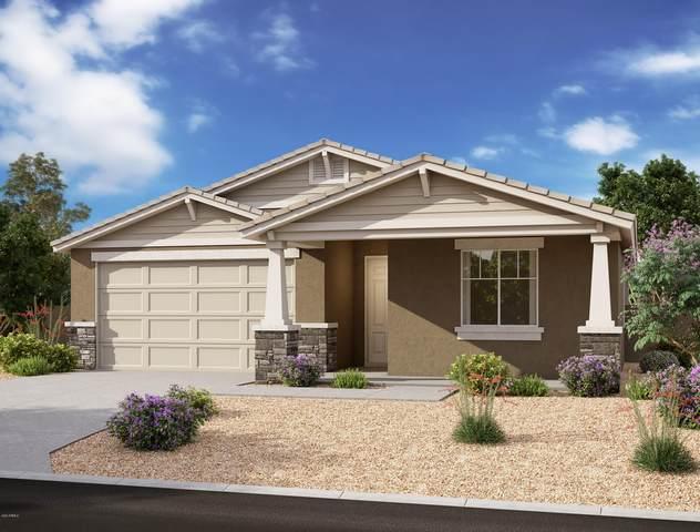 5528 W Western Star Boulevard, Laveen, AZ 85339 (MLS #6193532) :: Yost Realty Group at RE/MAX Casa Grande