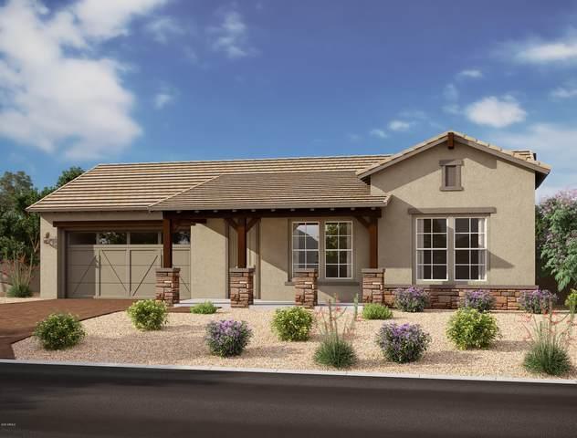 10731 E Tupelo Avenue, Mesa, AZ 85212 (MLS #6193555) :: The Daniel Montez Real Estate Group