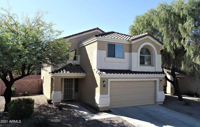 3035 W Santa Cruz Avenue, Queen Creek, AZ 85142 (MLS #6193657) :: Yost Realty Group at RE/MAX Casa Grande