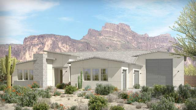 682 N Sun Road, Apache Junction, AZ 85119 (MLS #6193756) :: Yost Realty Group at RE/MAX Casa Grande