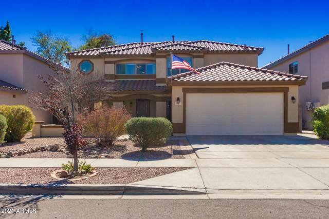 3227 W Molly Lane, Phoenix, AZ 85083 (MLS #6193837) :: Yost Realty Group at RE/MAX Casa Grande