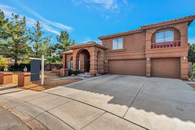 1469 E Canyon Way, Chandler, AZ 85249 (MLS #6193882) :: Yost Realty Group at RE/MAX Casa Grande