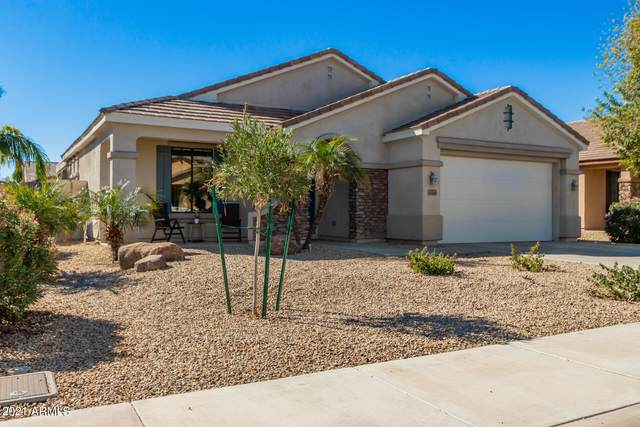 16143 W Devonshire Avenue, Goodyear, AZ 85395 (MLS #6193998) :: Yost Realty Group at RE/MAX Casa Grande