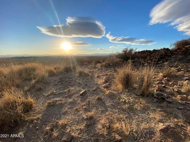 TBD Perliia Mountain Ranch, Douglas, AZ 85607 (MLS #6194175) :: Executive Realty Advisors