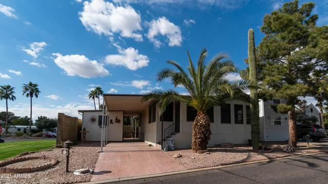 17200 W Bell Road #110, Surprise, AZ 85374 (MLS #6194186) :: My Home Group