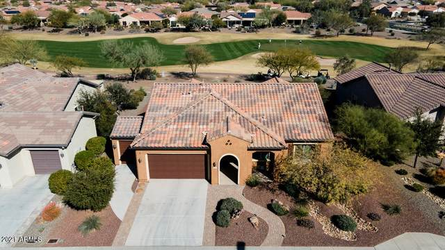 20317 N 269TH Drive, Buckeye, AZ 85396 (MLS #6194189) :: Yost Realty Group at RE/MAX Casa Grande