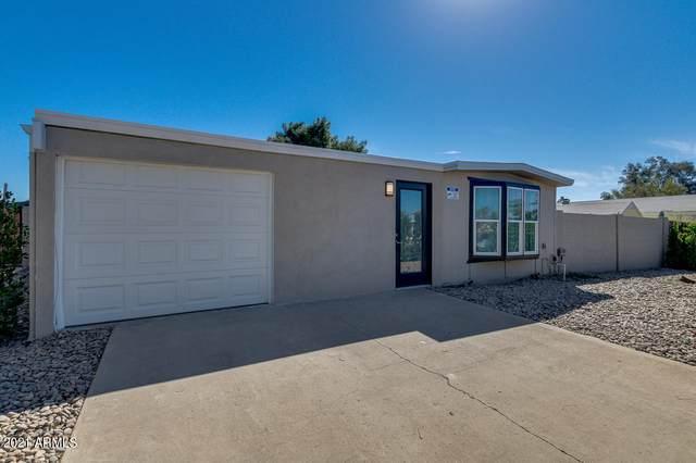 18439 N 2ND Street, Phoenix, AZ 85022 (MLS #6194237) :: Long Realty West Valley