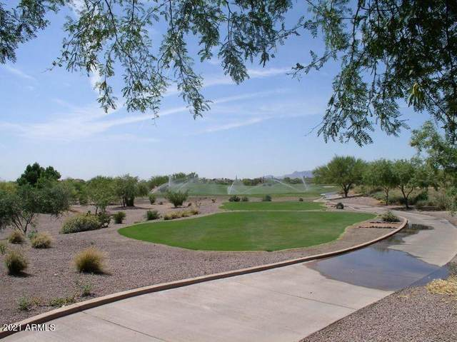 9267 E Superstition Mountain Drive, Gold Canyon, AZ 85118 (MLS #6194465) :: Yost Realty Group at RE/MAX Casa Grande