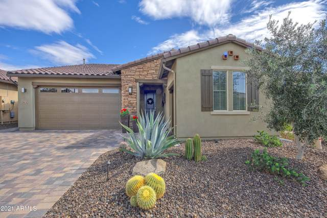 29237 N 134TH Avenue, Peoria, AZ 85383 (MLS #6194482) :: Yost Realty Group at RE/MAX Casa Grande