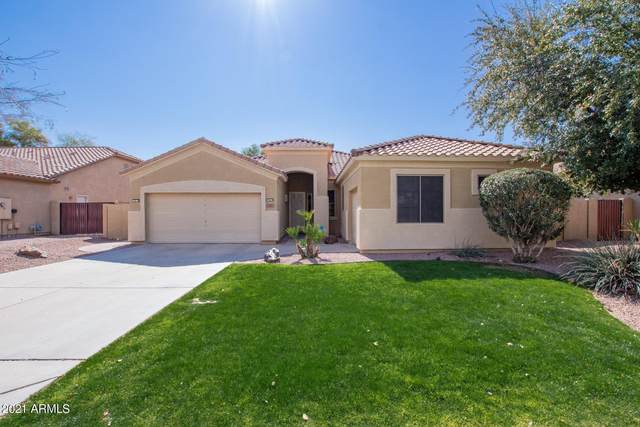 7407 W Tether Trail, Peoria, AZ 85383 (MLS #6194578) :: Yost Realty Group at RE/MAX Casa Grande