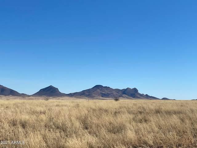 00 Hwy 83 & Elgin Road, Sonoita, AZ 85637 (MLS #6194581) :: The Riddle Group