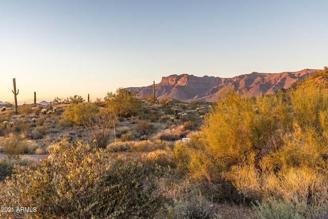 10866 E Palm Way, Gold Canyon, AZ 85118 (MLS #6194687) :: Yost Realty Group at RE/MAX Casa Grande
