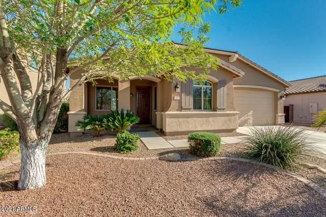 407 W Leatherwood Avenue, Queen Creek, AZ 85140 (MLS #6194749) :: Yost Realty Group at RE/MAX Casa Grande