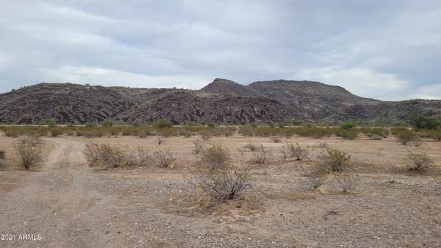 393XX W Mountain View Road, Tonopah, AZ 85354 (MLS #6194786) :: The Daniel Montez Real Estate Group
