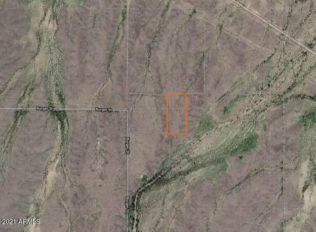 411XX W Burger St., Tonopah, AZ 85354 (MLS #6194788) :: Fred Delgado Real Estate Group