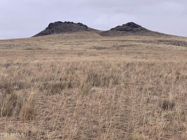 Arizona Rancheros #98 Lot 45, Holbrook, AZ 86025 (MLS #6194811) :: Yost Realty Group at RE/MAX Casa Grande