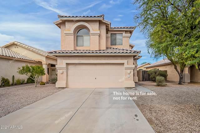 772 E Elgin Street, Chandler, AZ 85225 (MLS #6194850) :: Yost Realty Group at RE/MAX Casa Grande