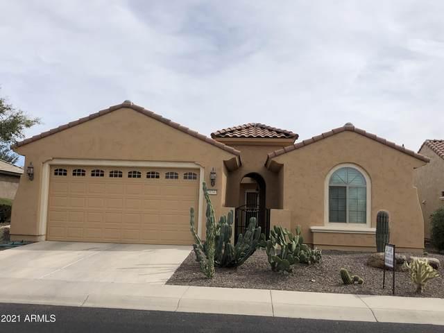 20343 N 271st Avenue, Buckeye, AZ 85396 (MLS #6194852) :: Yost Realty Group at RE/MAX Casa Grande