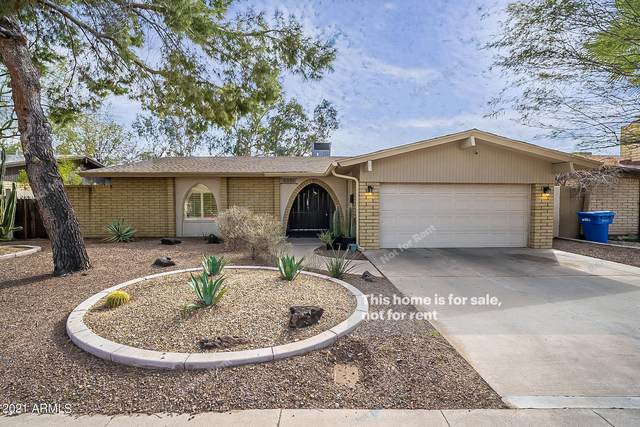 2021 W Palmaire Avenue, Phoenix, AZ 85021 (MLS #6194868) :: Yost Realty Group at RE/MAX Casa Grande