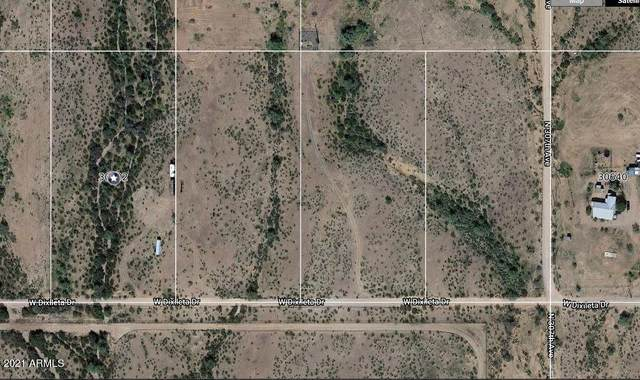 30802 W Dixileta Drive, Unincorporated County, AZ 00000 (MLS #6194985) :: The Property Partners at eXp Realty