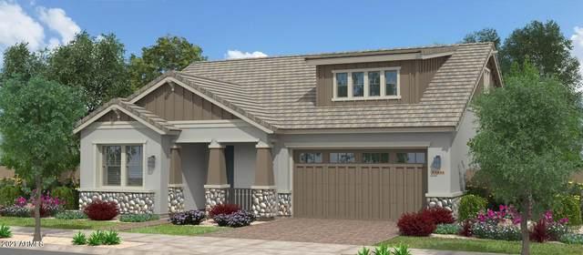 22943 E Thornton Road, Queen Creek, AZ 85142 (MLS #6195144) :: Yost Realty Group at RE/MAX Casa Grande