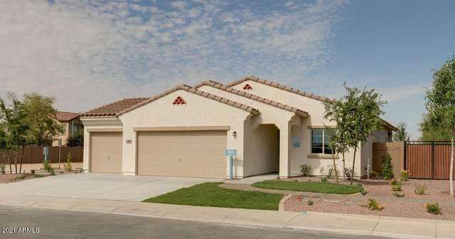 3097 N Spring Lane, Casa Grande, AZ 85122 (MLS #6195205) :: Yost Realty Group at RE/MAX Casa Grande