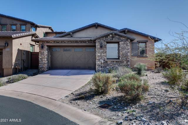 18564 N 94TH Street, Scottsdale, AZ 85255 (MLS #6195212) :: Long Realty West Valley