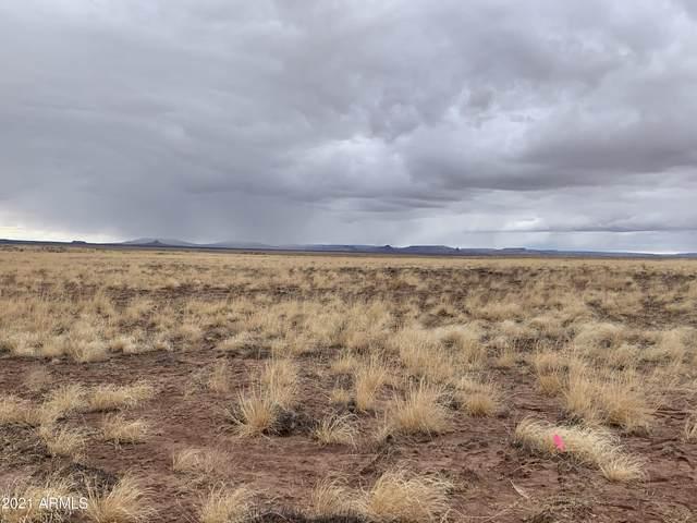 Arizona Rancheros #74 Lot 19, Holbrook, AZ 86025 (MLS #6195222) :: Yost Realty Group at RE/MAX Casa Grande