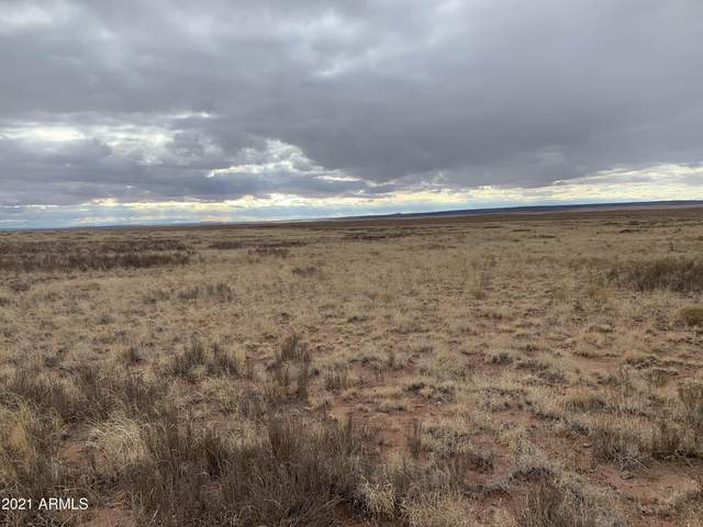 Arizona Rancheros #93 Lot 25, Holbrook, AZ 86025 (MLS #6195230) :: Yost Realty Group at RE/MAX Casa Grande