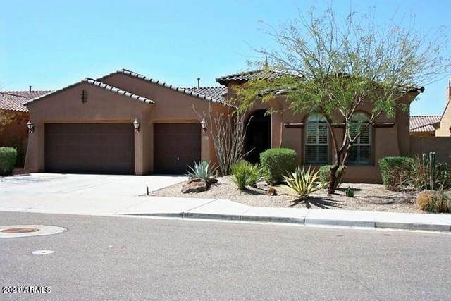 18117 W Juniper Drive, Goodyear, AZ 85338 (MLS #6195294) :: Devor Real Estate Associates
