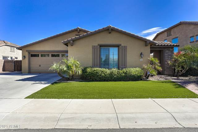 4311 S Newport Street, Chandler, AZ 85249 (MLS #6195393) :: Yost Realty Group at RE/MAX Casa Grande