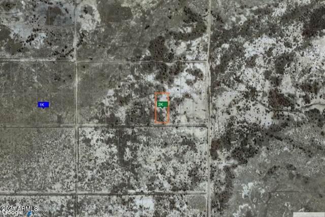 TBD Tbd, Pearce, AZ 85625 (MLS #6195545) :: Yost Realty Group at RE/MAX Casa Grande