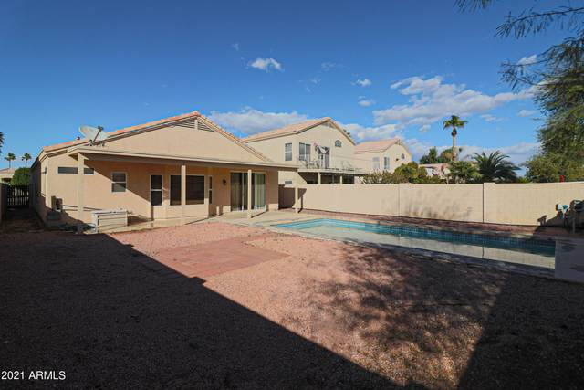10749 W Cottonwood Lane, Avondale, AZ 85392 (MLS #6195644) :: Yost Realty Group at RE/MAX Casa Grande