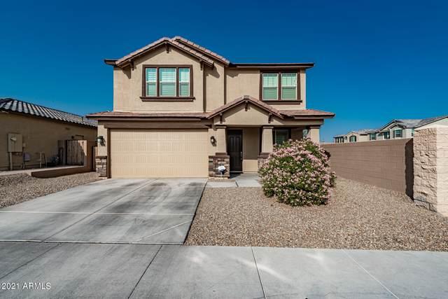 7914 S 25TH Place, Phoenix, AZ 85042 (MLS #6195648) :: Yost Realty Group at RE/MAX Casa Grande