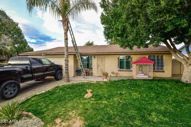 6736 E Ensenada Street, Mesa, AZ 85205 (MLS #6195659) :: Yost Realty Group at RE/MAX Casa Grande