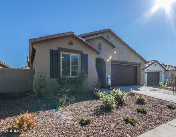 3033 N Acacia Way, Buckeye, AZ 85396 (MLS #6195683) :: Howe Realty