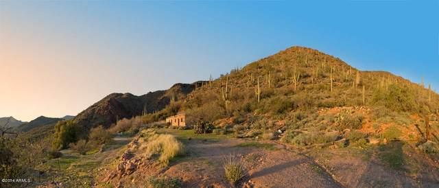 43222 N 79th Street, Cave Creek, AZ 85331 (MLS #6195685) :: The Laughton Team
