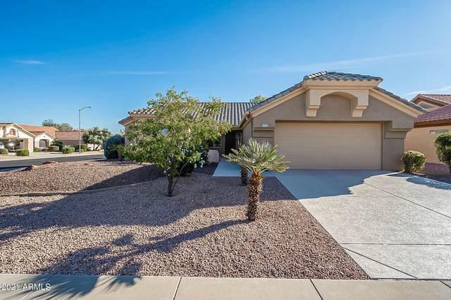 14415 W Via Manana, Sun City West, AZ 85375 (MLS #6195739) :: The Copa Team   The Maricopa Real Estate Company