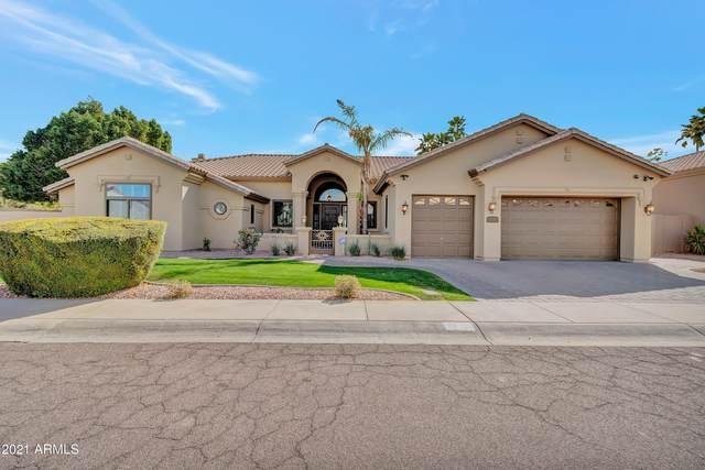 3039 E Rock Wren Road, Phoenix, AZ 85048 (MLS #6195755) :: Yost Realty Group at RE/MAX Casa Grande